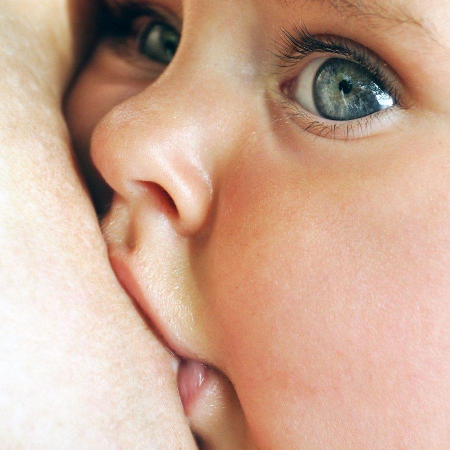 Tiovivo de emociones cuando damos a luz en En Suelo Firme